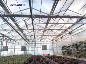UVPLASTIC Polycarbonate greenhouse project