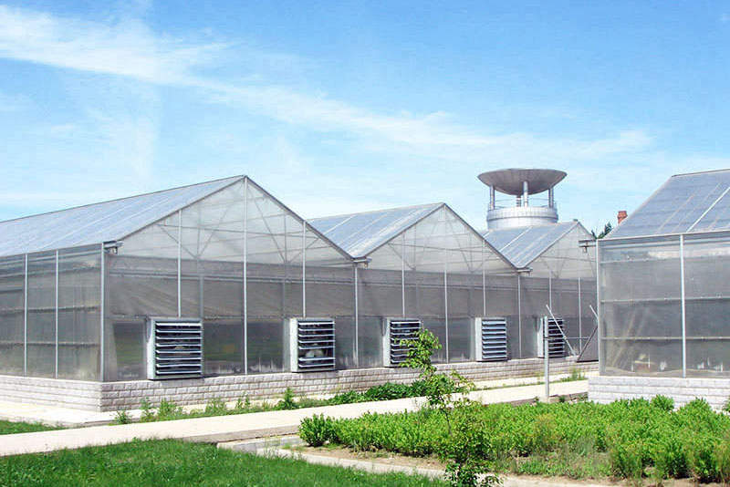 Manufacturer of Polycarbonate greenhouse sheet in China