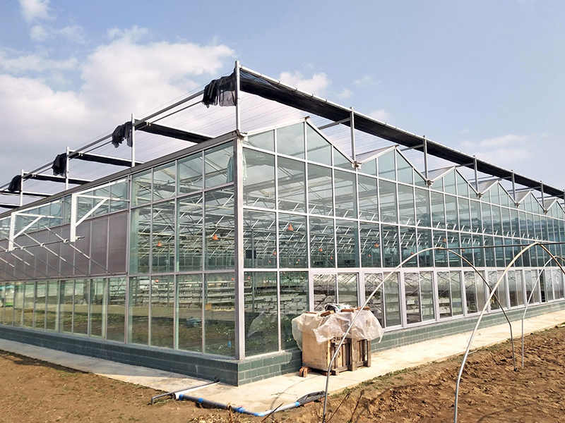Glass Greenhouse Sheet